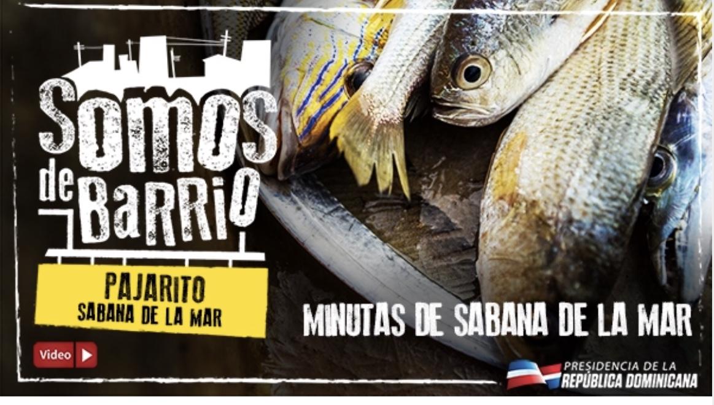 VIDEO: Pajarito, Sabana de la Mar. Minutas de Sabana de la Mar