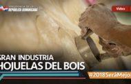 VIDEO:Gran Industria. Hojuelas del Bois #2018SeráMejor