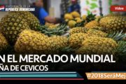 VIDEO: En el mercado mundial. Piña de Cevicos #2018SeráMejor