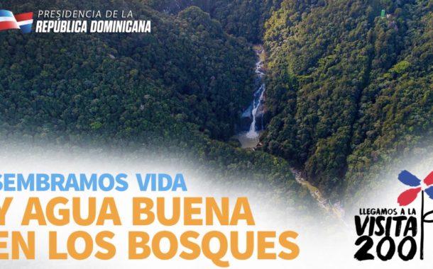 VIDEO: Sembramos vida y agua buena en los bosques