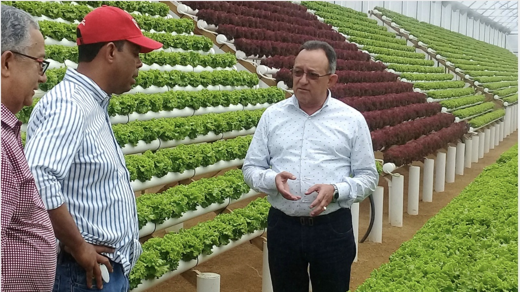 Gobierno implementa medidas preventivas para garantizar producción de vegetales en Rancho Arriba
