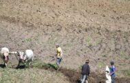 Gobierno reubicará a cien agricultores desalojados del parque de Valle Nuevo