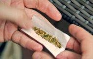 Dominicanos NY opuestos regularicen uso marihuana para adultos