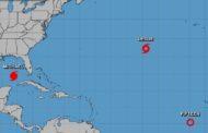 La trayectoria del huracán Michael indica que el ojo se desplazará hoy hacia la parte oriental del Golfo de México en dirección norte y el miércoles tocará tierra en la zona del