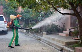 Hay 27 provincias en alerta amarilla por el dengue
