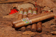 República Dominicana, invitada de honor International Cigar Expo 2019, en Shenzhen